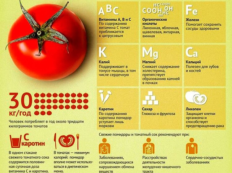 помидоры пищевая ценность